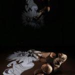 Mécanique | Anima Théâtre